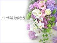 即日緊急配送 花材はお任せ〜季節のお花で上品に仕上げます〜